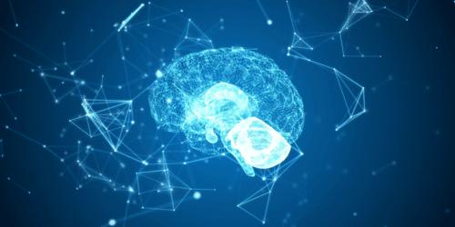 cerveau digital